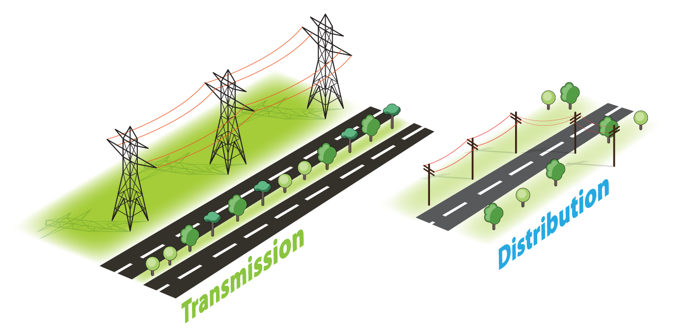 Transmission vs. Distribution